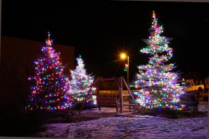 Christmas tree light up by Cathy Cox